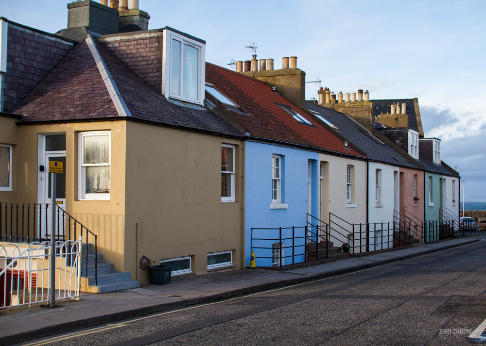 Zuri_Zuberi_North_Berwick_14