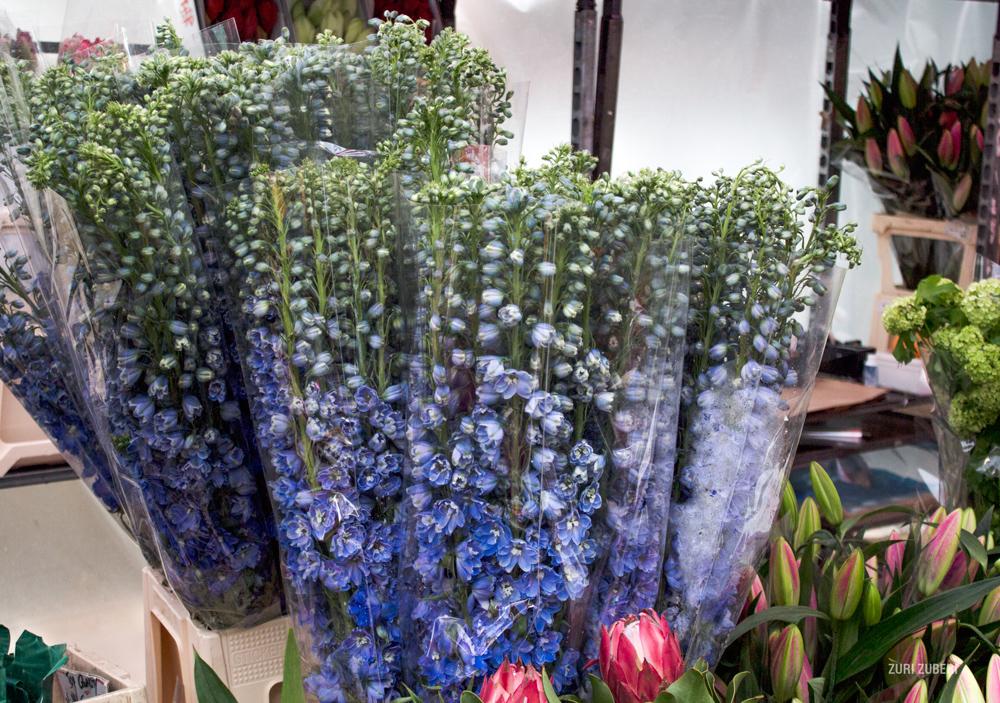 zuri_zuberi_flower_market_3