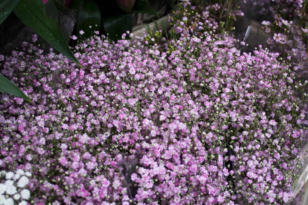 zuri_zuberi_flower_market_4