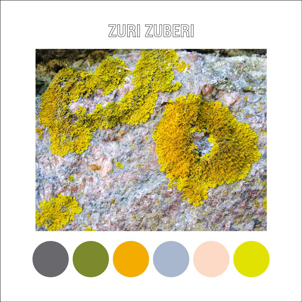 Bright Lichen
