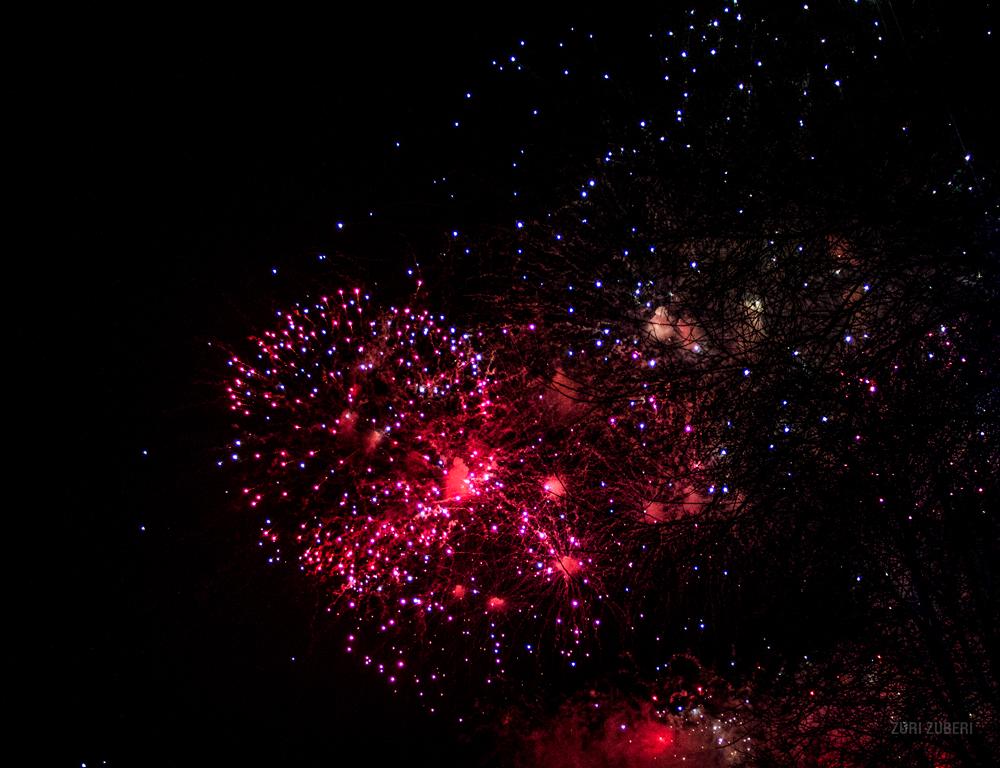 zuri_zuberi_fireworks_9