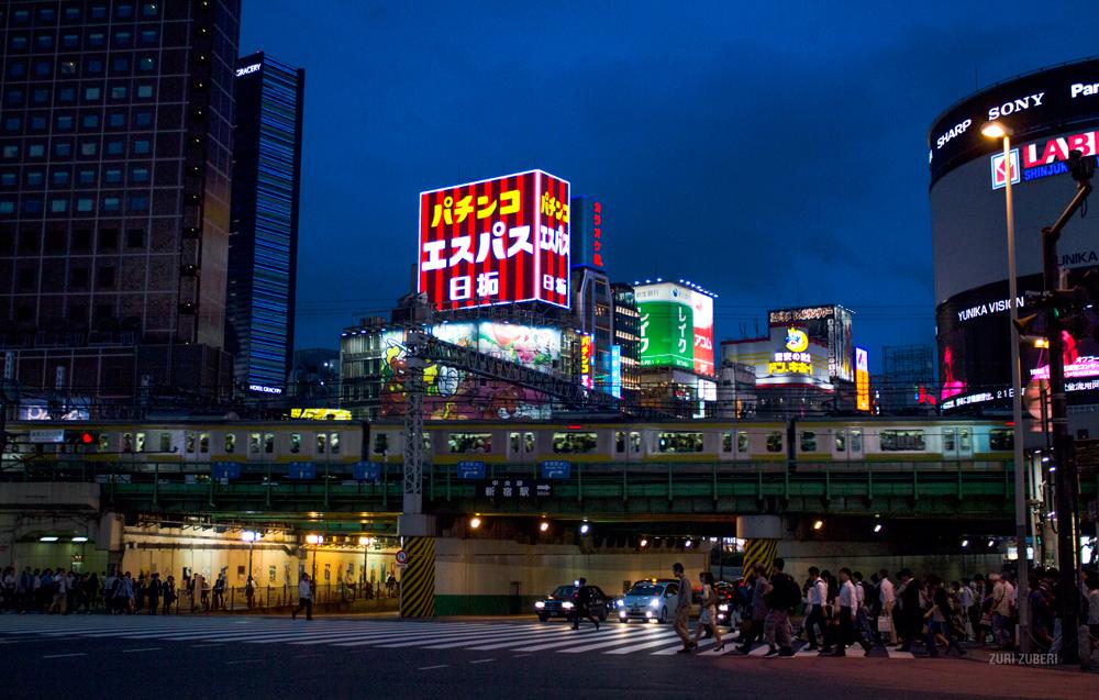 Zuri_Zuberi_Tokyo_by_night_6