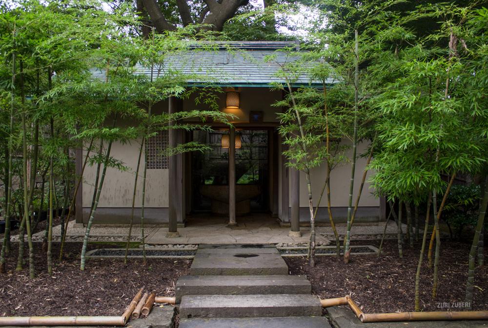 Zuri_Zuberi_Kamakura_3