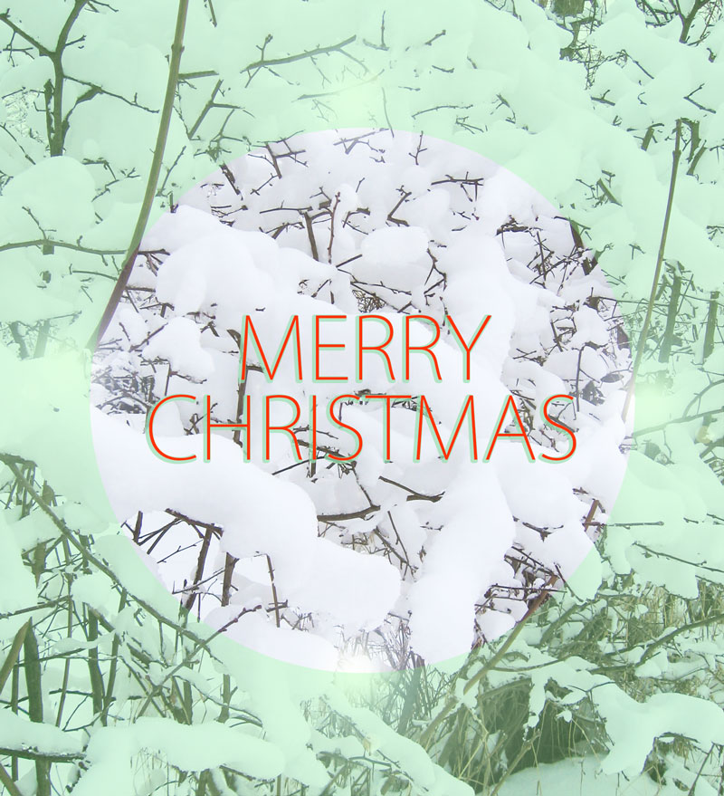 Wishing you all a Merry Christmas!