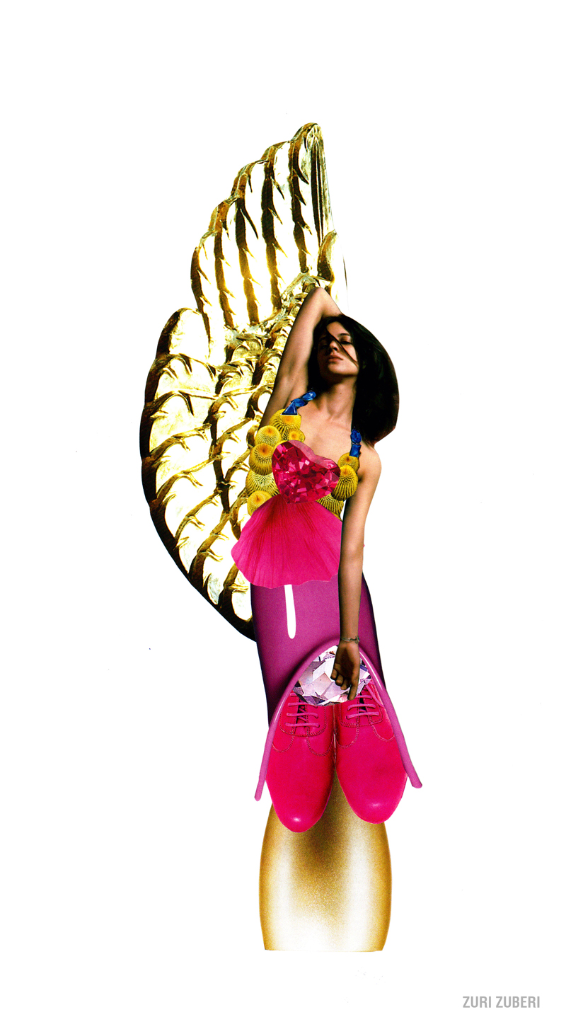 The golden winged lady