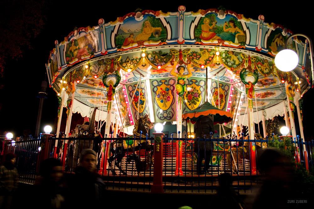 Vibrant Carousel
