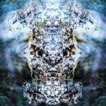 Phantom Mineral