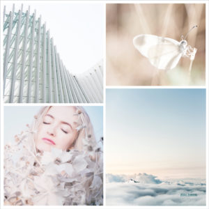 Mood Board Love – Morning Light