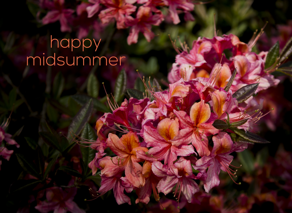 Happy Midsummer
